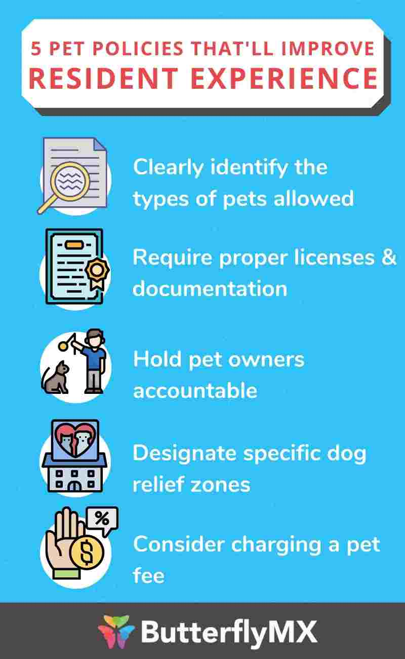 5 apartment pet policies that'll improve resident experience
