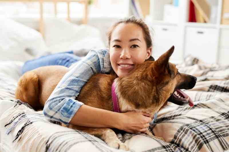 Apartment Pet Policies: 5 Ways to Improve Your Resident Experience