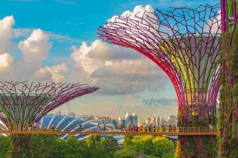 biophilic design park
