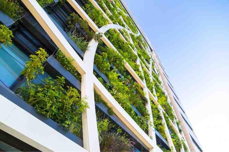 living wall biophilic design